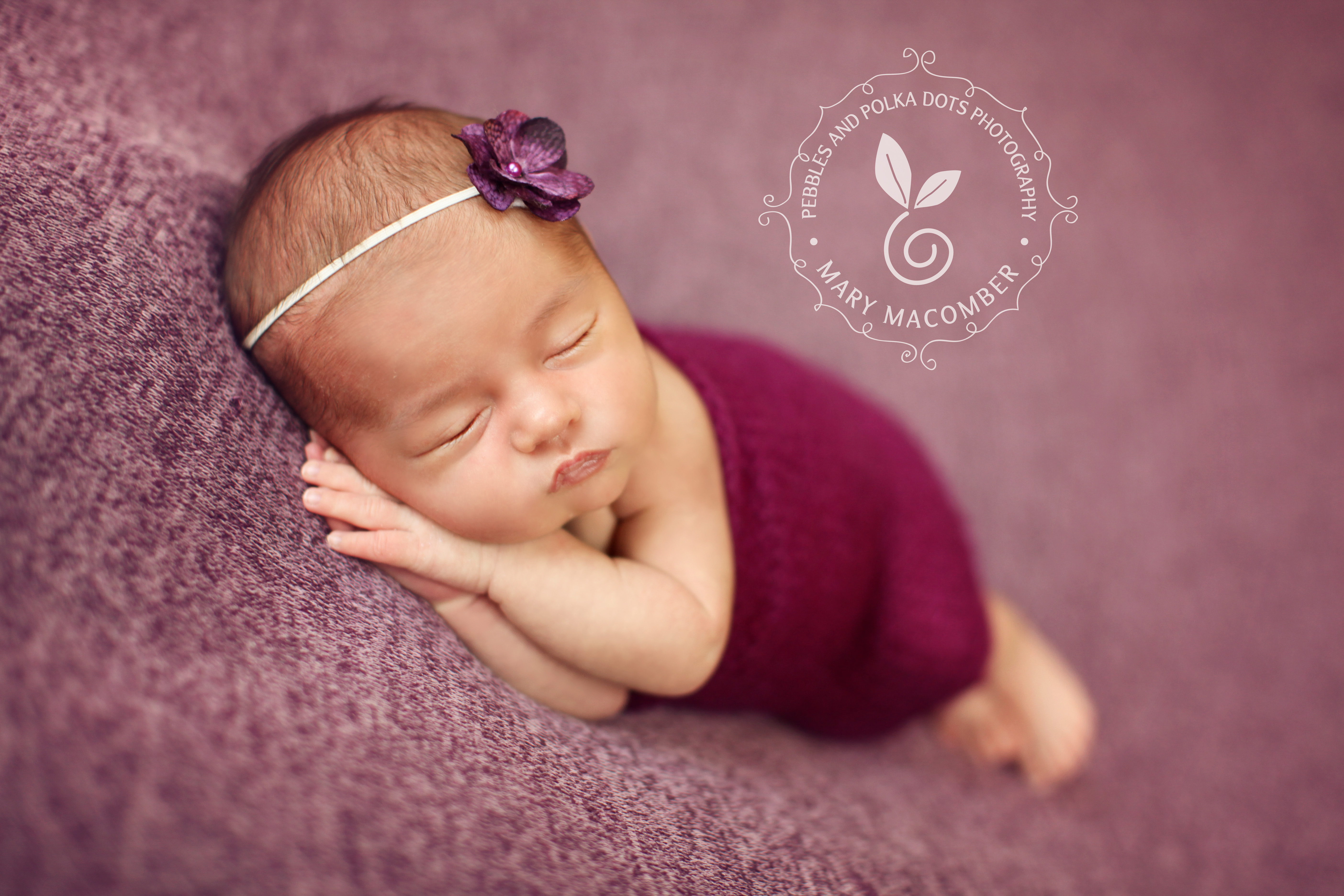 15 day old lillian worcester ma newborn photographer