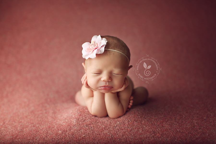 Worcester ma newborn and baby photographer boston mass