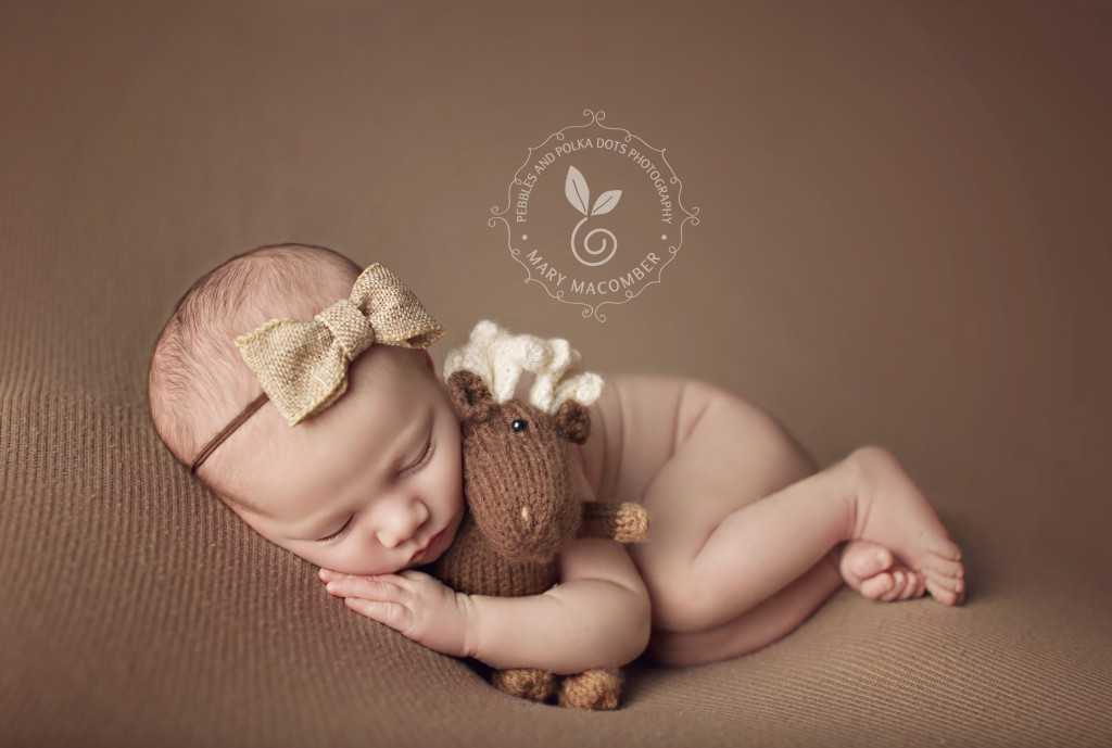 2016 Newborn Mentoring Works With Pebbles And Polka Dots Photography Worcester Ma