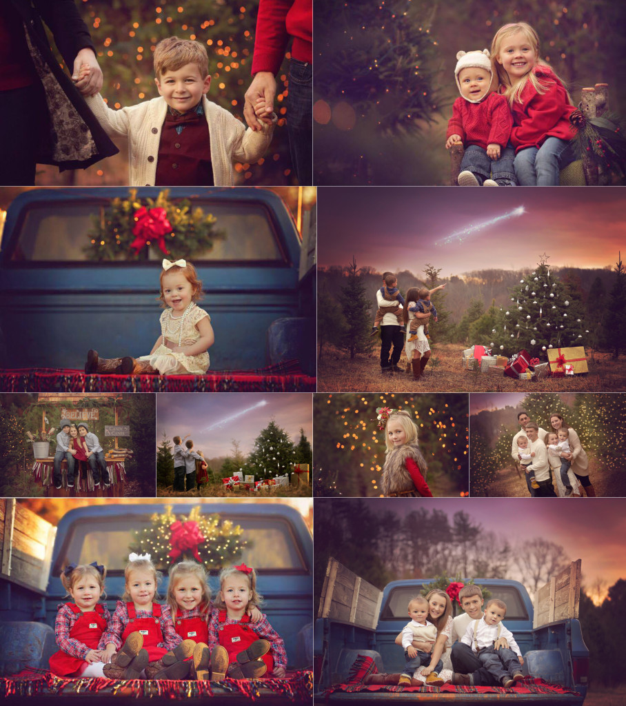 Christmas Mini Sessions.2016 Christmas Mini Sessions Now Booking Pebbles And